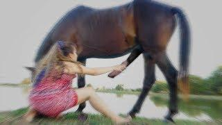 Basics Village Cute Girl Dance for Training Horse Care for Beginners - How to training a horse care