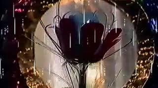 Woman In Love _ Người Đàn Yêu ☆ Cs Ngọc Bích _ Video 1989 ☆ VND 3/2/2019