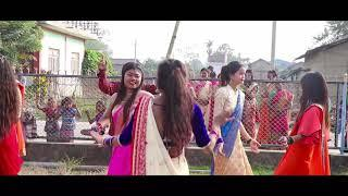 Tharu girls wedding dance at Madi chitwan!