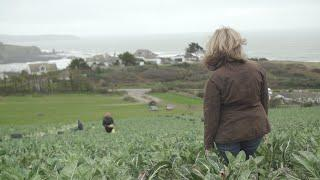 Is there a gender imbalance in farming? International Women's Day film