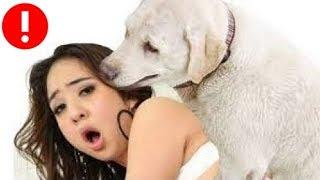 Girl + Dog Love Play ???????????? Girl and Dog Doing Things ???????????? Girl caught on camera with