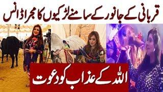 Girls Dance and Mojra to Sale Qurbani Janwar