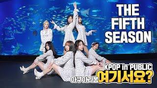 [여기서요?] OH MY GIRL 오마이걸 - THE FIFTH SEASON 다섯번째 계절 | 커버댄스 DANCE COVER | KPOP IN PUBLIC