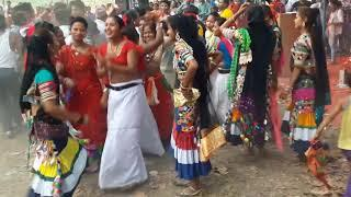Tharu Girls Dance ko Dhamakedar Video || Nepali Song || Bhojpuri DJ Song 2019 || New DJ Song