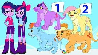 MLP Equestria Girls Species Swap Collection Animation - My Little Pony Video Episode For Kids HD NEW