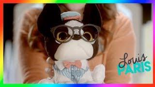Best Toys for girls★Trendy Dogs are here★ Little love pets ★Juguetes para niñas | PekeToysTv
