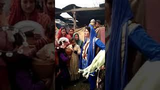 kashmiri girls dance at marriage |kashmir|